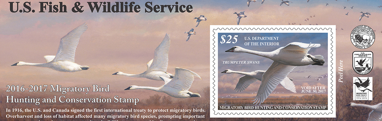 2016-17 Federal Duck Stamp