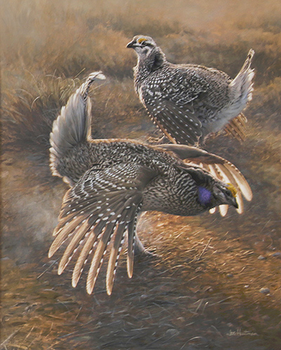 sharptail grouse painting